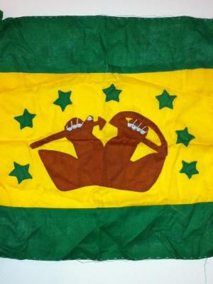 Mi bandera de la revolución Kuna