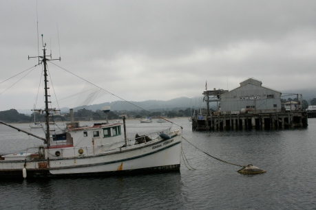 Muelle de Monterey, California