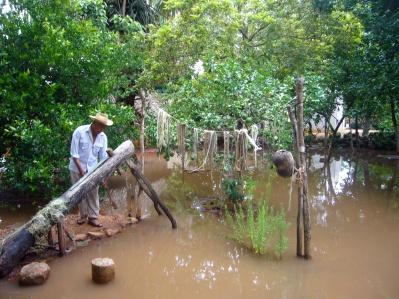 huerto maya