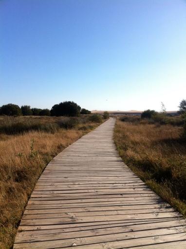 camino a la duna de corrubedo