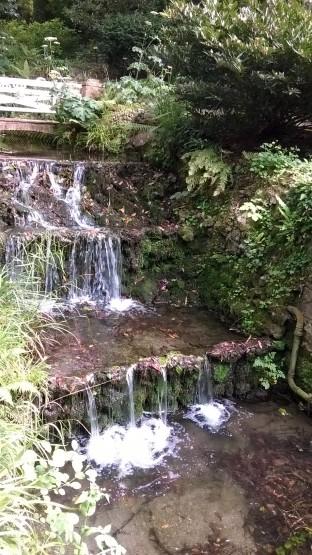 cascada en el botánico de Gjón