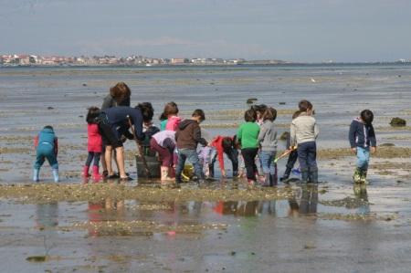 niños mariscando
