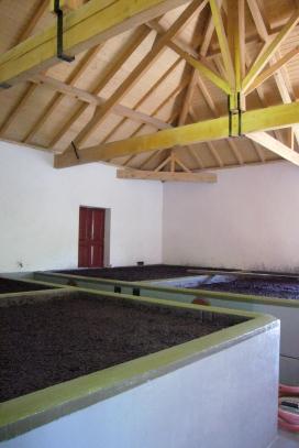 cubas de vino fermentando