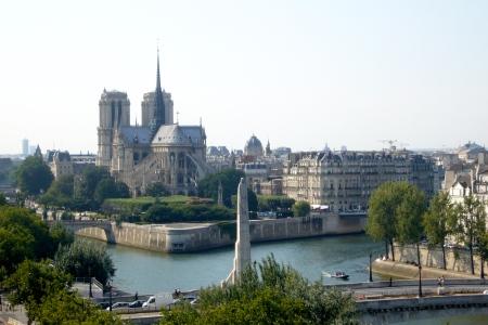 Notre Dame desde la azotea del IMA