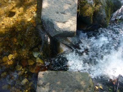 Piedra y agua en el río Armenteira