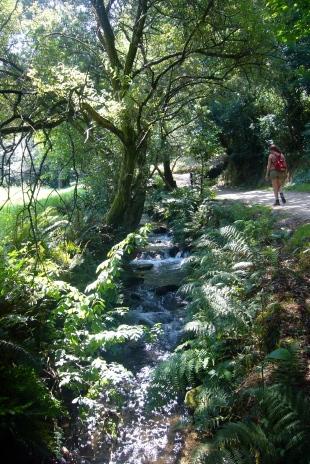 Ruta de la Piedra y el Agua en el Río Armenteira