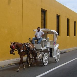 Calesa por las calles de Mérida