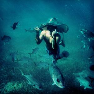 Shark Ray Alley, el guía usando una raya como sombrero...