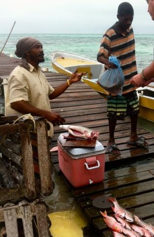 comprando pescado en cayo caulker, belice