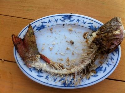 pescado en Cayo Caulker, Belice