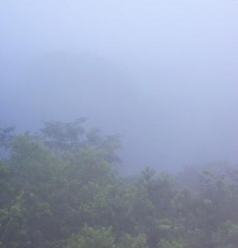 Vistas de Tikal al amanecer desde la cima del templo IV
