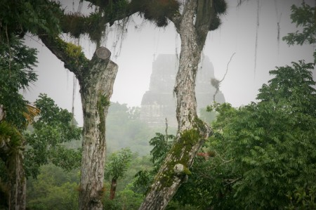 Uno de los templos de Tikal dejándose ver entre la vegetación de la selva.