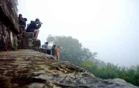 Ambiente matutino en la cima del templo IV de Tikal