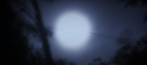 Luna llena en Tikal