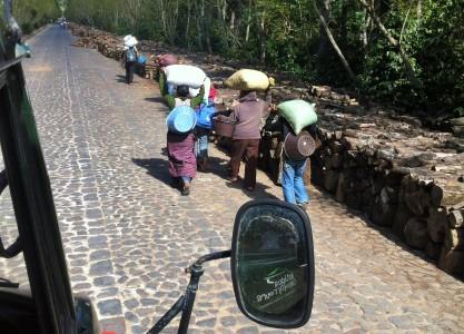 Trabajadores del cafetal de Finca Filadelfia en Antigua Guatemala