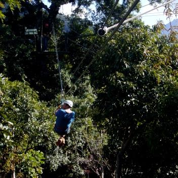tour de canopy en Antigua