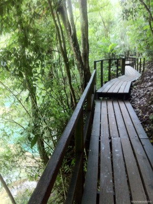 Camino a las cascadas