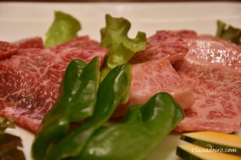 carne-de-hida